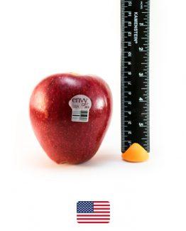 แอปเปิ้ลเอนวี่อเมริก-า2