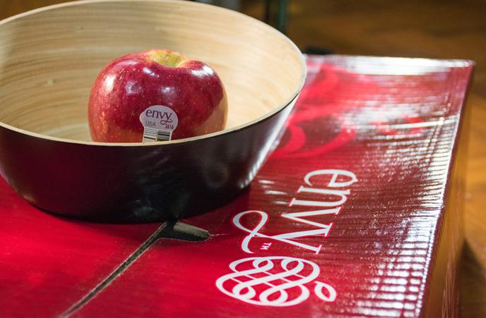 แอปเปิ้ลเอนวี่อเมริกา-3