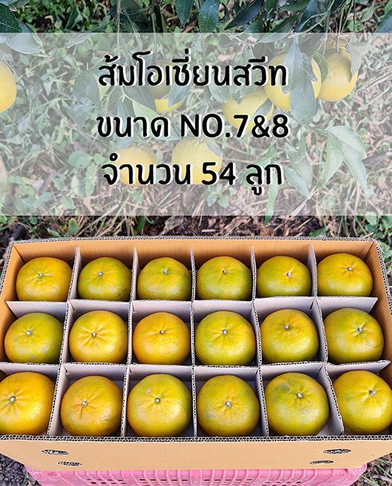 ส้มโอเชี่ยนสวีท ขายส่ง ฝาง เชียงใหม่ ออนไลน์ 2