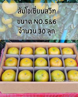 ส้มโอเชี่ยนสวีท ขายส่ง ฝาง เชียงใหม่ ออนไลน์ 3