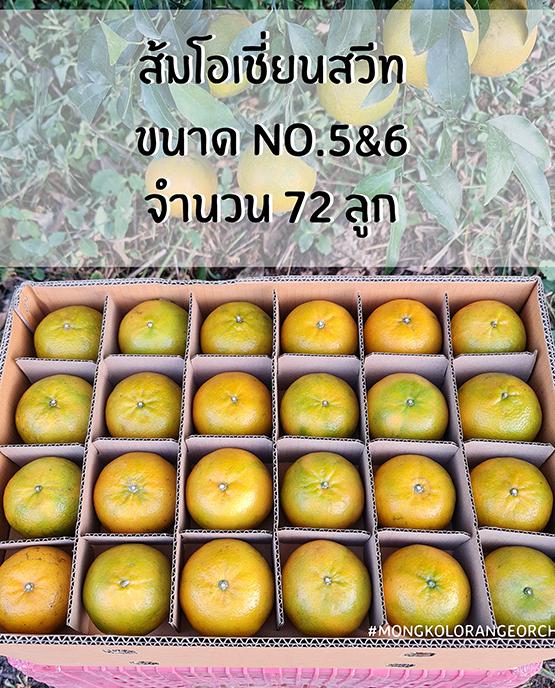 ส้มโอเชี่ยนสวีท ขายส่ง ฝาง เชียงใหม่ ออนไลน์ 4