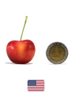 ผลไม้ต่างประเทศ-เชอรี่ทอง2