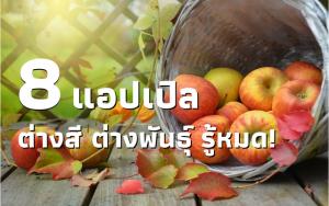แอปเปิ้ล-head