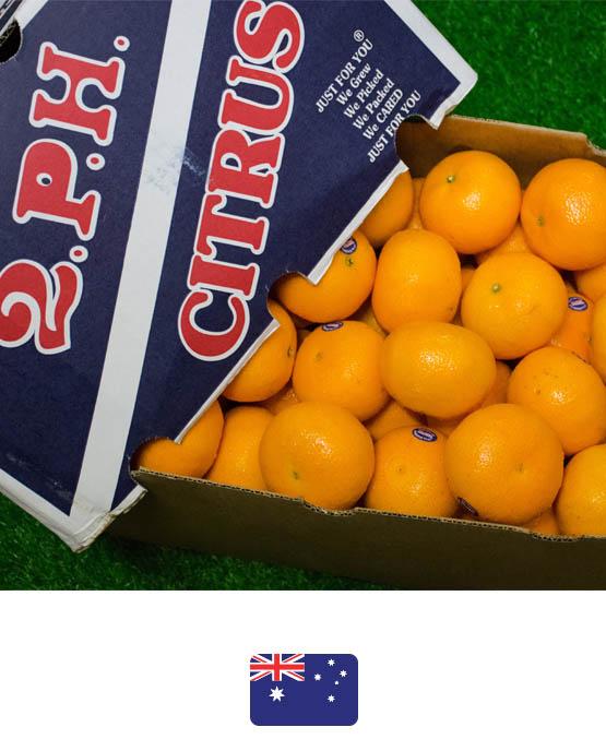 ผลไม้สด-2p-ส้มแมนดาริน