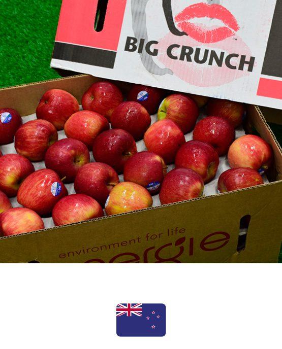 ผลไม้-แอปเปิลฟูจิ-นิวซีแลนด์