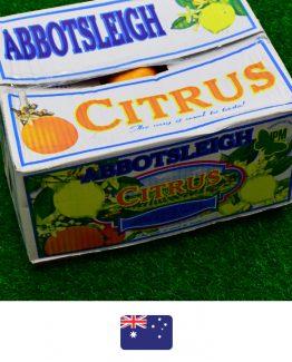 ส้มแมนดาริน-ออสเตรเลีย