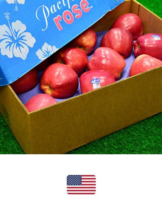 แอปเปิลโรส-อเมริกา-ผลไม้