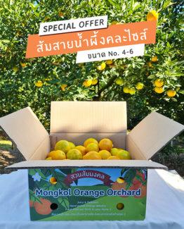 ส้มสายน้ำผึ้งขายส่ง ฝาง เชียงใหม่ ออนไลน์